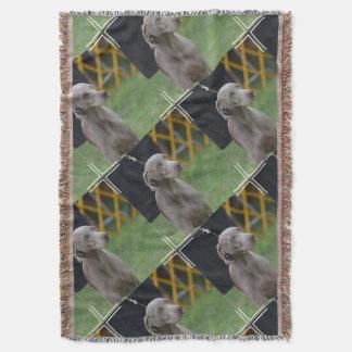 Cute Weimaraner Dog Throw Blanket
