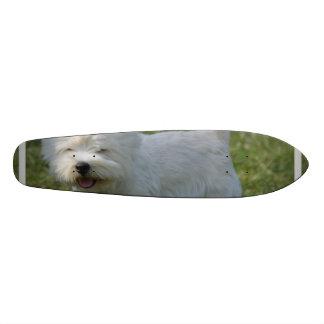 Cute West Highland Terrier Skate Board Decks