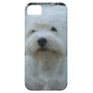Cute West Highland White Terrier iPhone 5 Cases