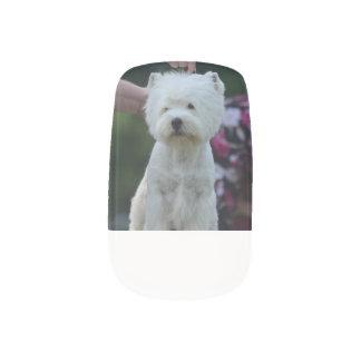 Cute West Highland White Terrier Fingernail Transfers