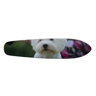 Cute West Highland White Terrier Skateboard Deck