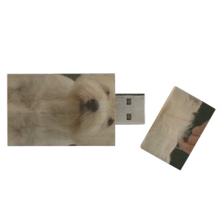 Cute West Highland White Terrier Wood USB Flash Drive