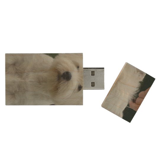 Cute West Highland White Terrier Wood USB Flash