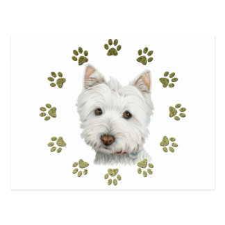 Cute Westie Dog Art and Paws Postcard