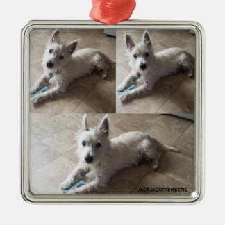 Cute Westie on Premium Square Ornaments