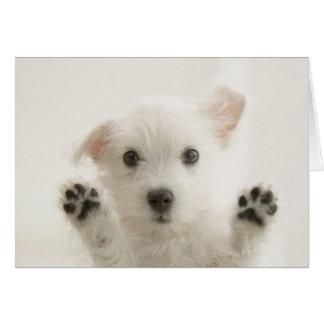 Cute Westie Puppy Card