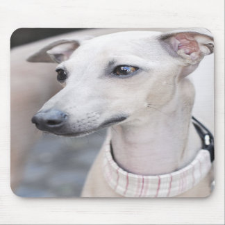 Cute Whippet Mouse Pads