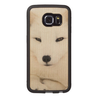Cute white arctic fox face Galaxy S6 Edge case