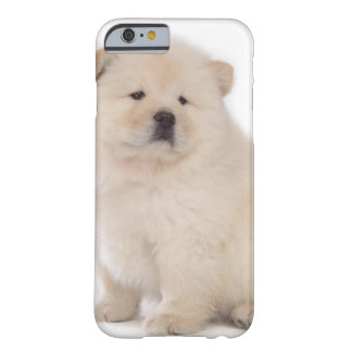 cute white chow chow puppy pup dog barely there iPhone 6 case
