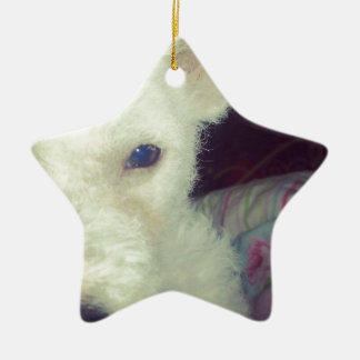 Cute white dog ceramic star decoration