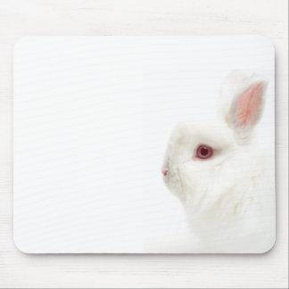 Cute white dwarf rabbit mouse pad