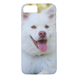 Cute White Fluffy Dog iPhone Case