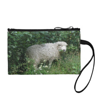 Cute White Fluffy Sheep Eating Bagettes Bag