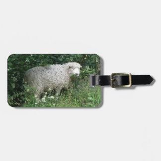 Cute White Fluffy Sheep Eating Custom Luggage Tag