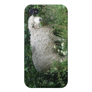 Cute White Fluffy Sheep Eating iPhone Case