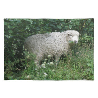 Cute White Fluffy Sheep Eating Placemat