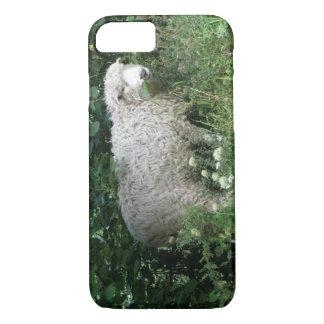 Cute White Fluffy Sheep iPhone Case