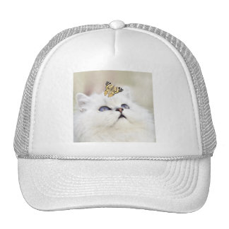 Cute white kitten trucker hat