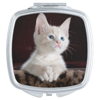 Cute white kitten portrait compact mirror