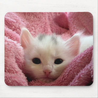 Cute white kitten sleeping in pink blanket mouse pads