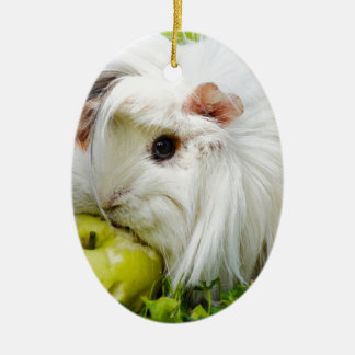 Cute White Long Hair Guinea Pig Eating Apple Ceramic Oval Decoration