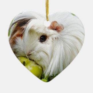 Cute White Long Hair Guinea Pig Eating Apple Christmas Ornament