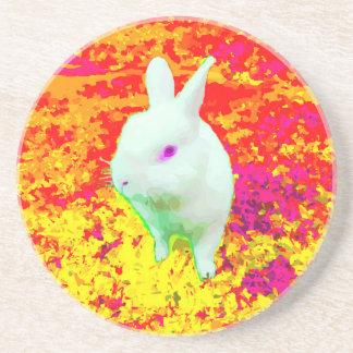Cute White Pet Rabbit Pink Eyes Coaster