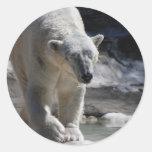 Cute White Polar Bear Stickers