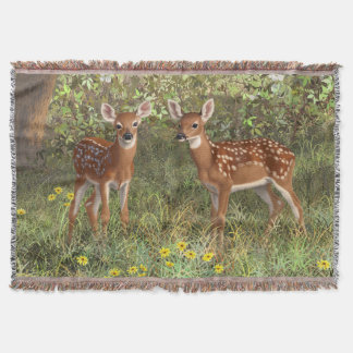 Cute Whitetail Deer Twin Fawns