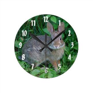 Cute Wild Brown Rabbit Round Clock