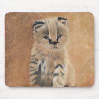 Cute wild serval kitten mouse pad