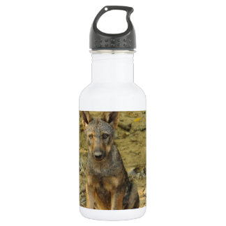 Cute Wolf Cub 532 Ml Water Bottle