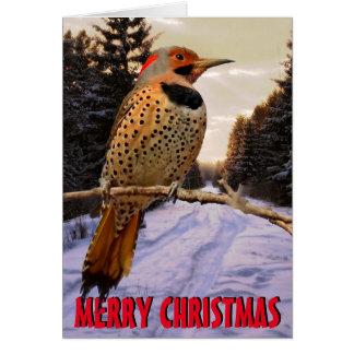 Cute woodpecker Christmas Card