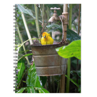 Cute, yellow bird bathing in a bucket note books