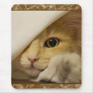 Cute Yellow Kitten Mousepad Mouse Pad