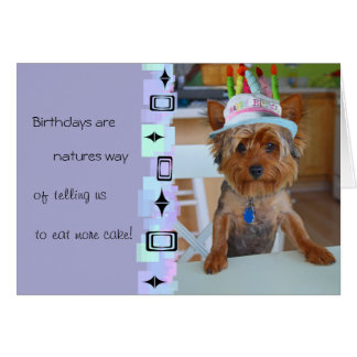 Cute Yorkie Birthday Card