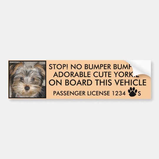 CUTE YORKIE BUMPER STICKER  (NO BUMPER BUMPING)