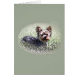 Cute Yorkie Terrier Buddy Custom Greeting Card