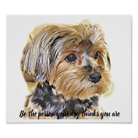 Cute Yorkie Yorkshire Terrier Dog Funny Quote Poster Zazzle Co Uk