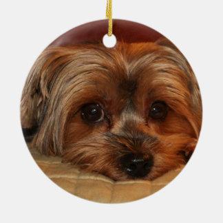 Cute Yorkshire Terrier Dog Round Ceramic Decoration