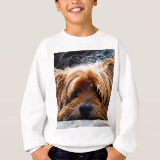 Cute Yorkshire Terrier Dog Sweatshirt