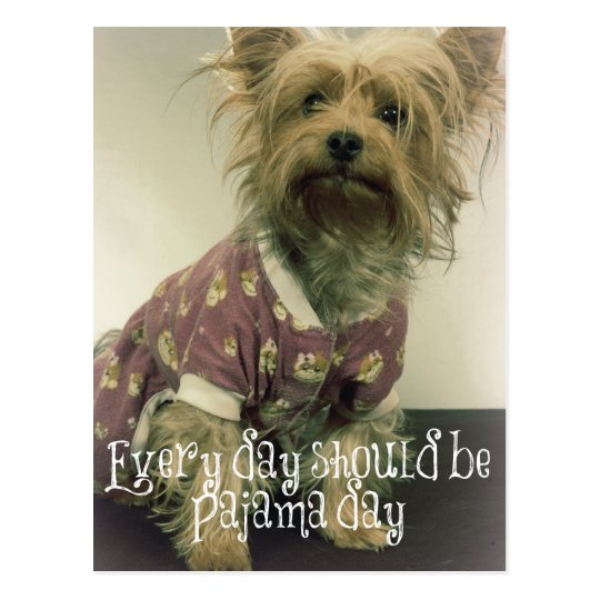 Cute Yorkshire Terrier in Pyjamas with Quote Postcard