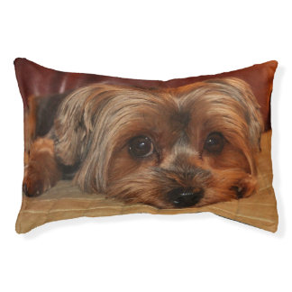 Cute Yorkshire Terrier Puppy Dog Pet Bed