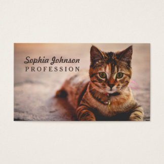 Cute Young Tabby Cat Kitten Kitty Pet Business Card