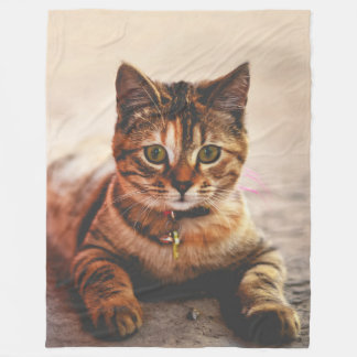 Cute Young Tabby Cat Kitten Kitty Pet Fleece Blanket