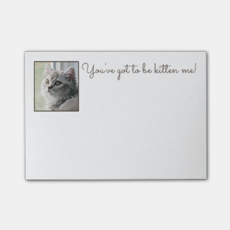 """Cute """"You've got to be kitten me!"""" Post-it Notes"""