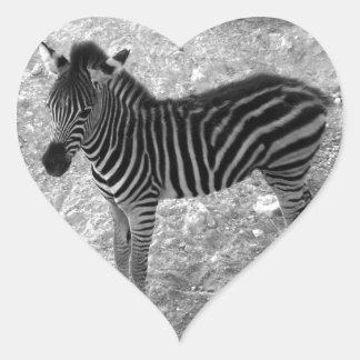 cute zebra calf heart sticker
