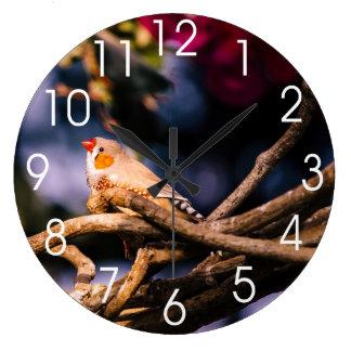 Cute Zebra Finch On Twigs Large Clock