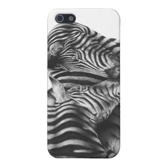 Cute Zebras iPhone 5/5S Cover