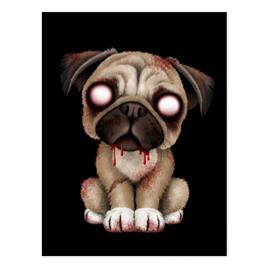 Cute Zombie Pug Puppy Dog on Black Postcard